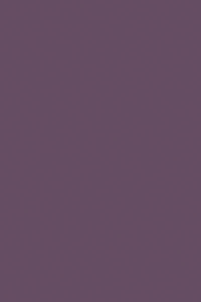 7167_su_fialka_viola