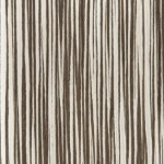 zebrano bianco
